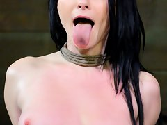 Veruca James Is An Alabaster Skinned Classic Treasure. But Behind Those Fine Cheekbones And Stunning Looks Lurks A Natural Born Pervert. She Craves Th